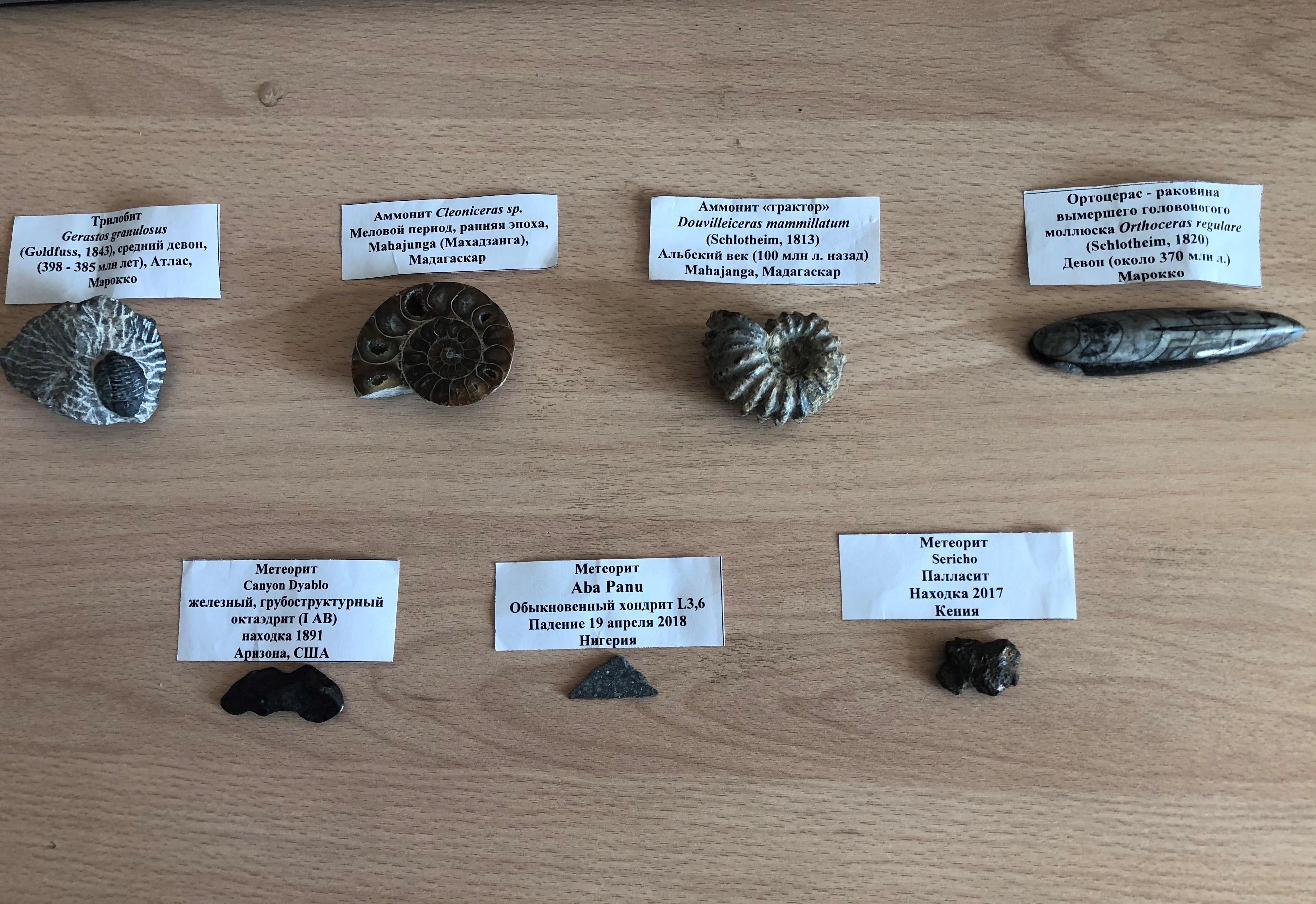 Школьный музей пополнился семью артефактами