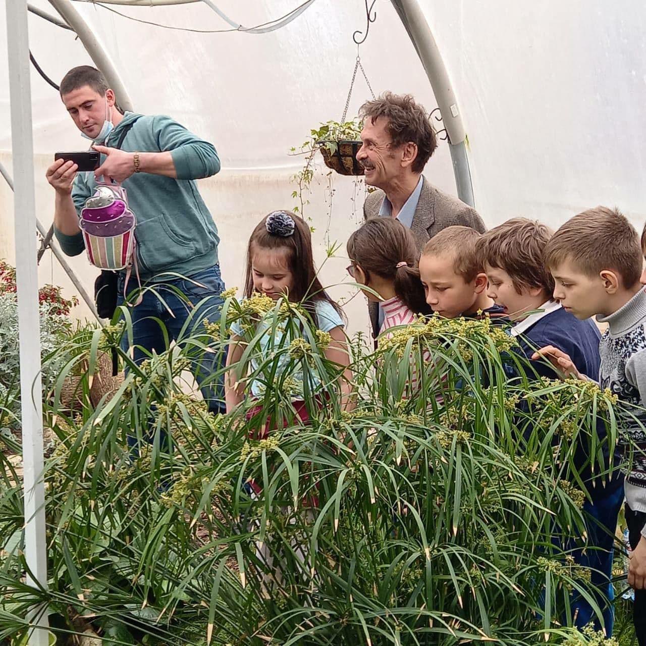 обзор на растения в теплице